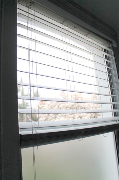 Bathroom Blind Joanna Thornhill for Stylist's Own - Window Side