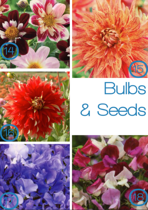 Bulbs and seeds from Plant Me Now, as seen on Stylist's Own Blog by Joanna Thornhill
