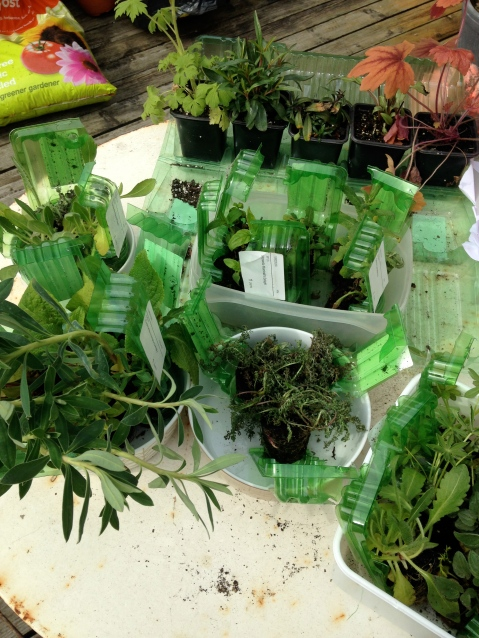 Preparing to plant, as seen on Stylist's Own Blog by Joanna Thornhill