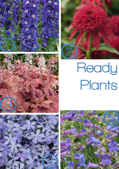 Ready plants from Plant Me Now, as seen on Stylist's Own Blog by Joanna Thornhill